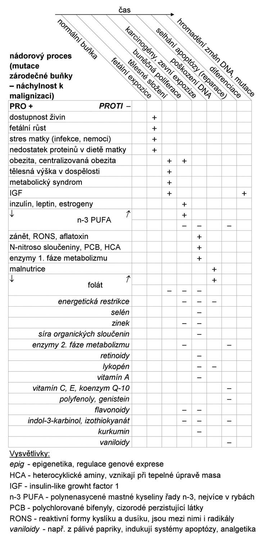 Výživové faktory ve fázích karcinogeneze