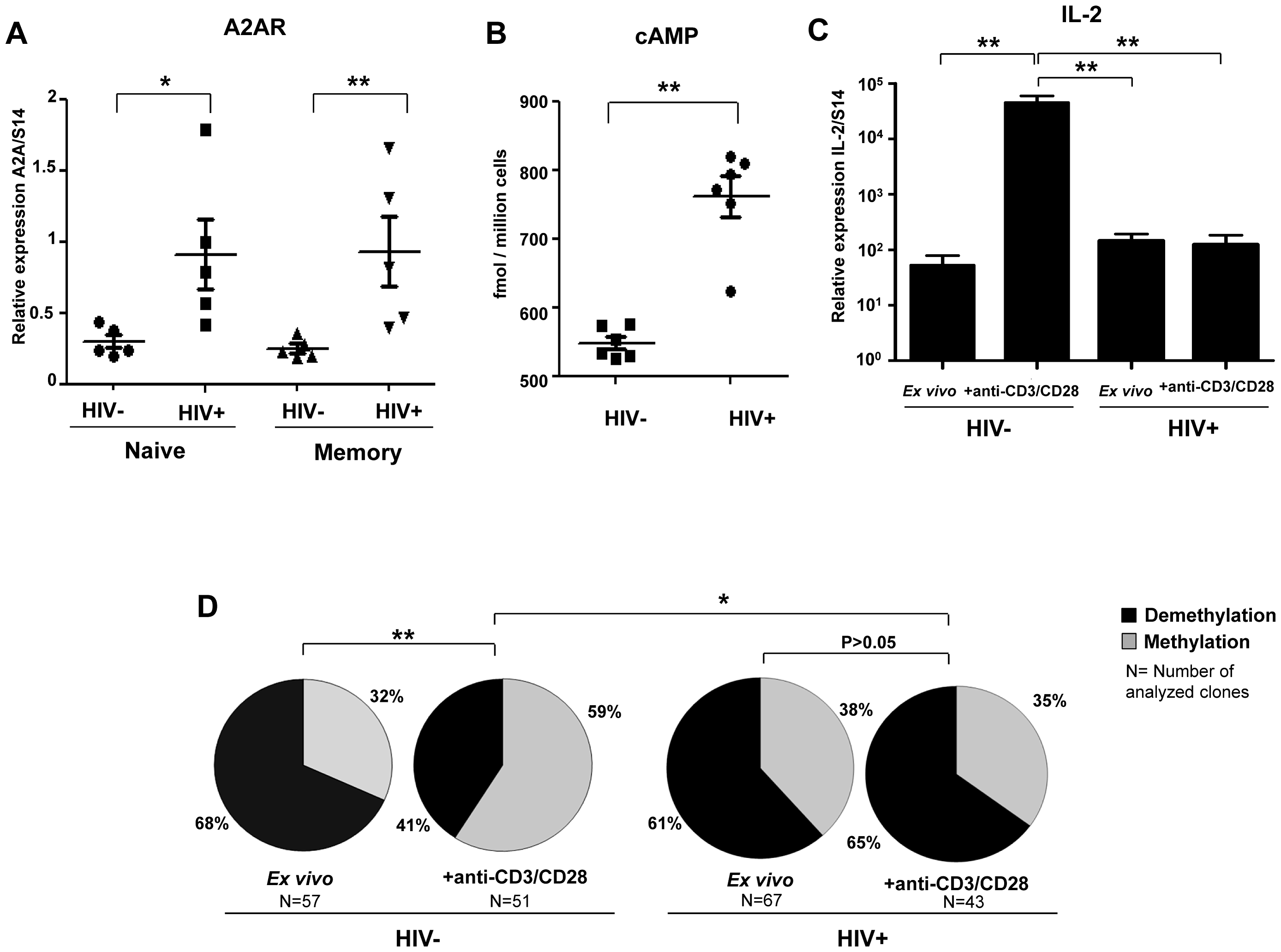 High levels of A2AR and endogenous cAMP in CD4+ T cells from HIV infected patients and lack of IL-2 production