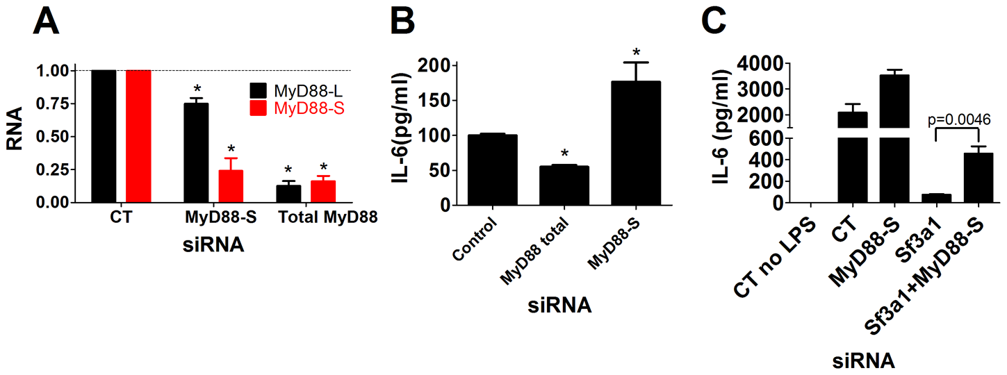 Specific inhibition of MyD88<sub>S</sub> enhances LPS-induced cytokine production and partially rescues the innate immune defect caused by SF3A1 RNAi.