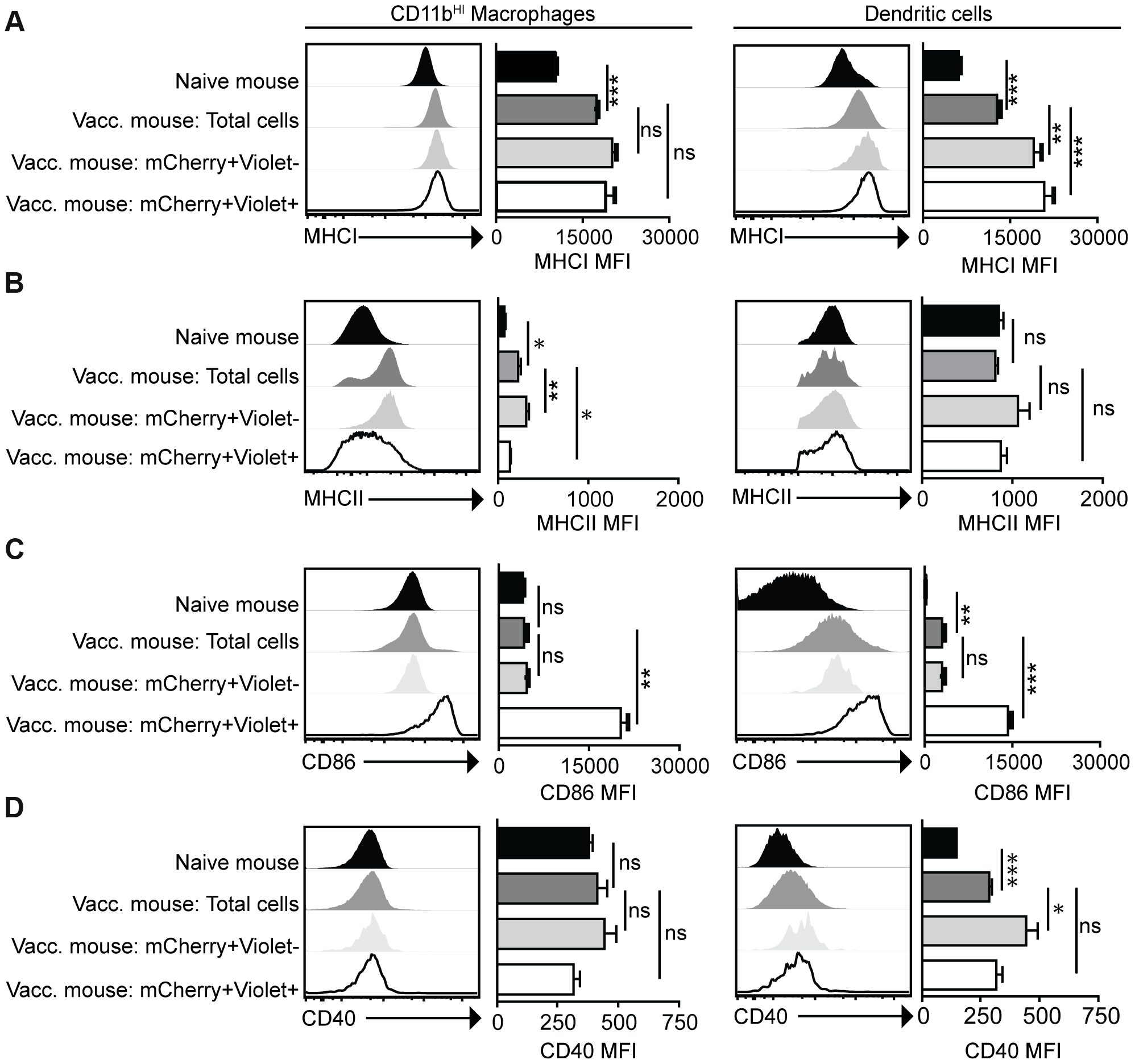 Activation status of mCherry<sup>+ve</sup>Violet<sup>−ve</sup> and mCherry<sup>+ve</sup>Violet<sup>+ve</sup> macrophages and dendritic cells.