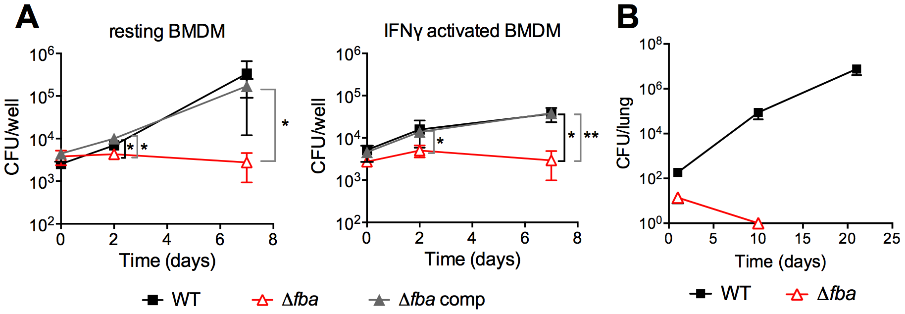 FBA is required for replication in macrophages and growth and survival in mouse lungs.