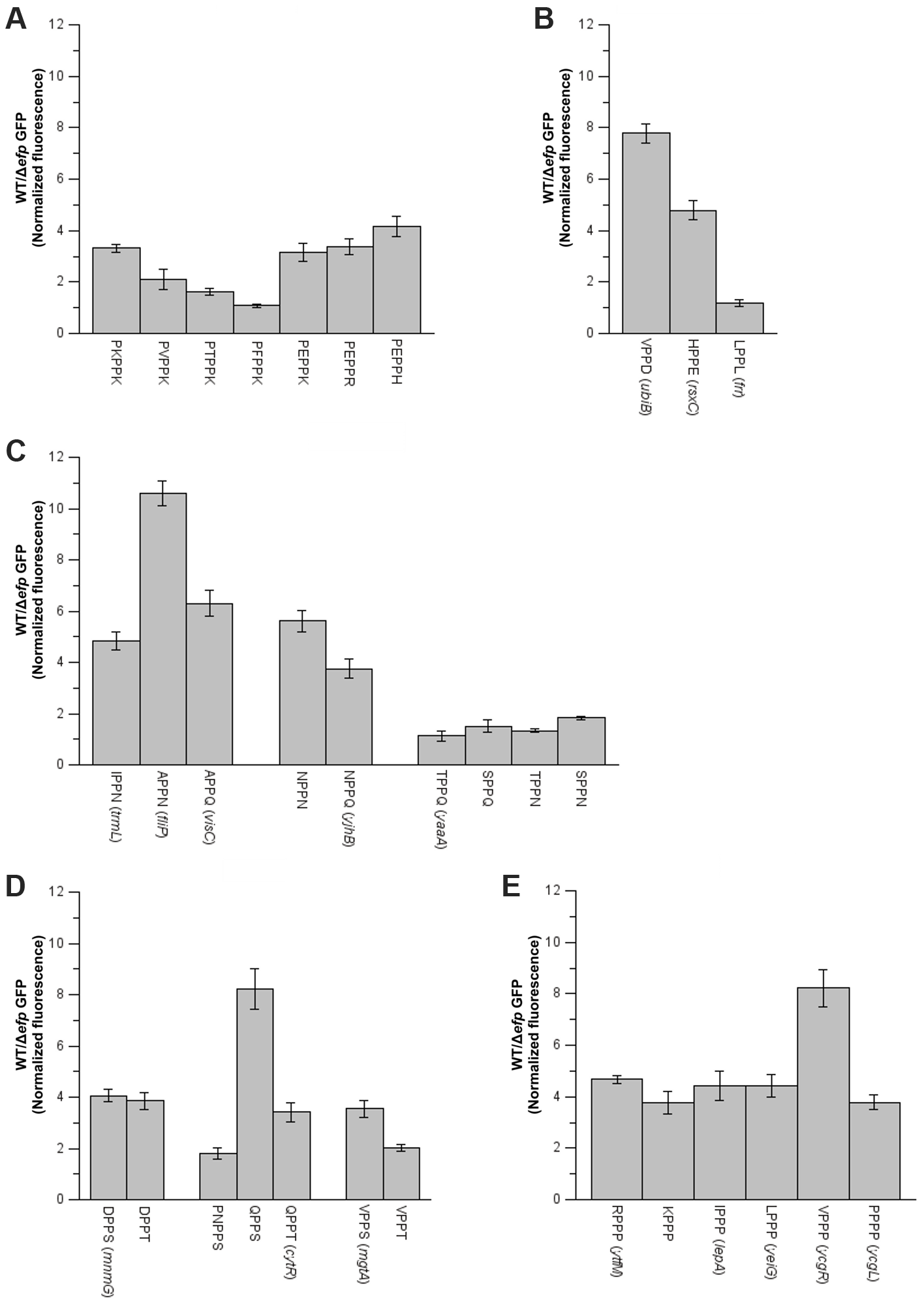 Effect of amino acids preceding PPX on pausing efficiency.