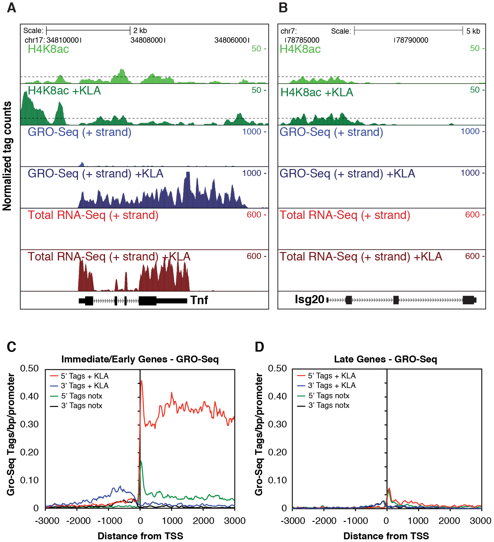 Analysis of nascent RNA transcripts (GRO-Seq), total RNA, and H4 acetylation.