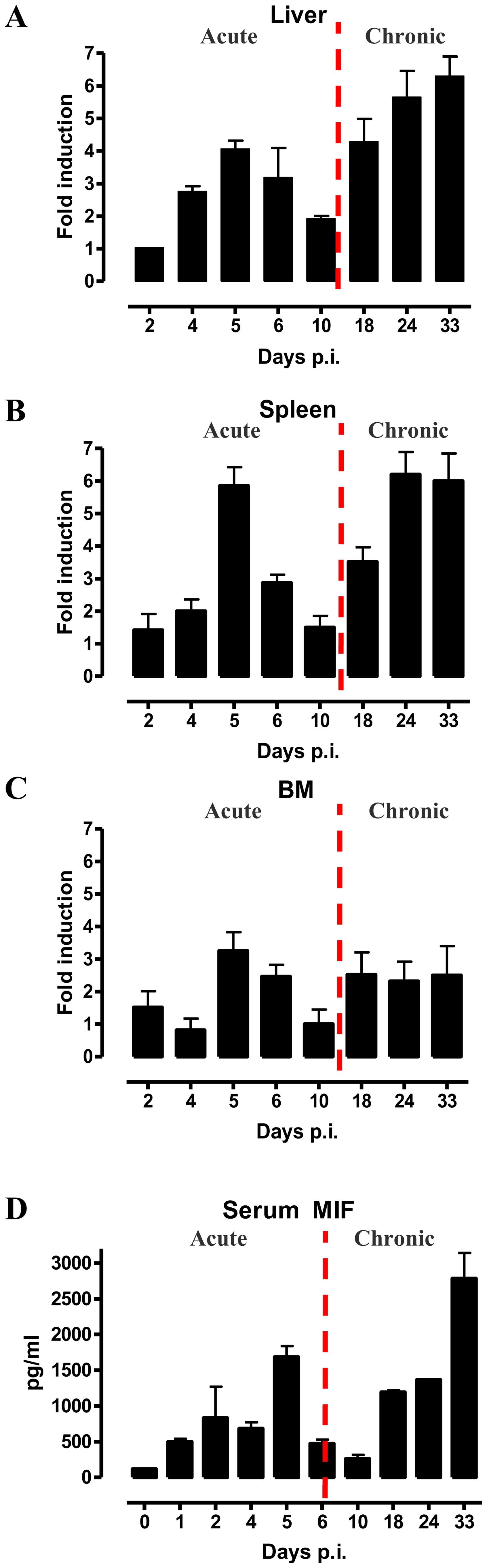 MIF expression exhibits biphasic profiles during <i>T. brucei</i> infection.