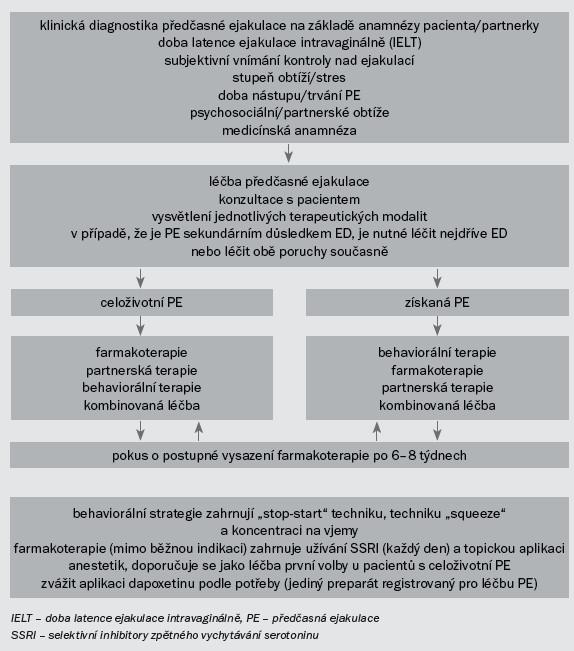 Schéma 4. Léčba PE. Převzato od Lue et al [49].