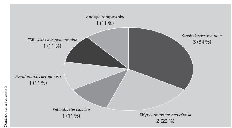 Mikrobiologická agens z osteokutánní píštěle