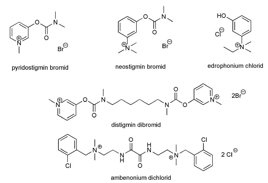 Inhibitory acetylcholinesterasy používané v symptomatické terapii MG