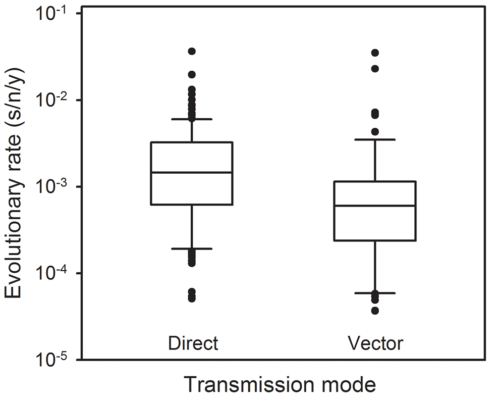 Molecular evolution of directly transmitted and arthropod-transmitted riboviruses.
