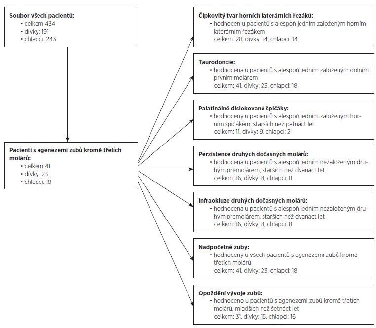 Schematické znázornění souboru pacientů