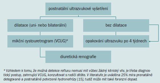 Schéma 2. Diagnostický algoritmus dilatace horních cest močových.