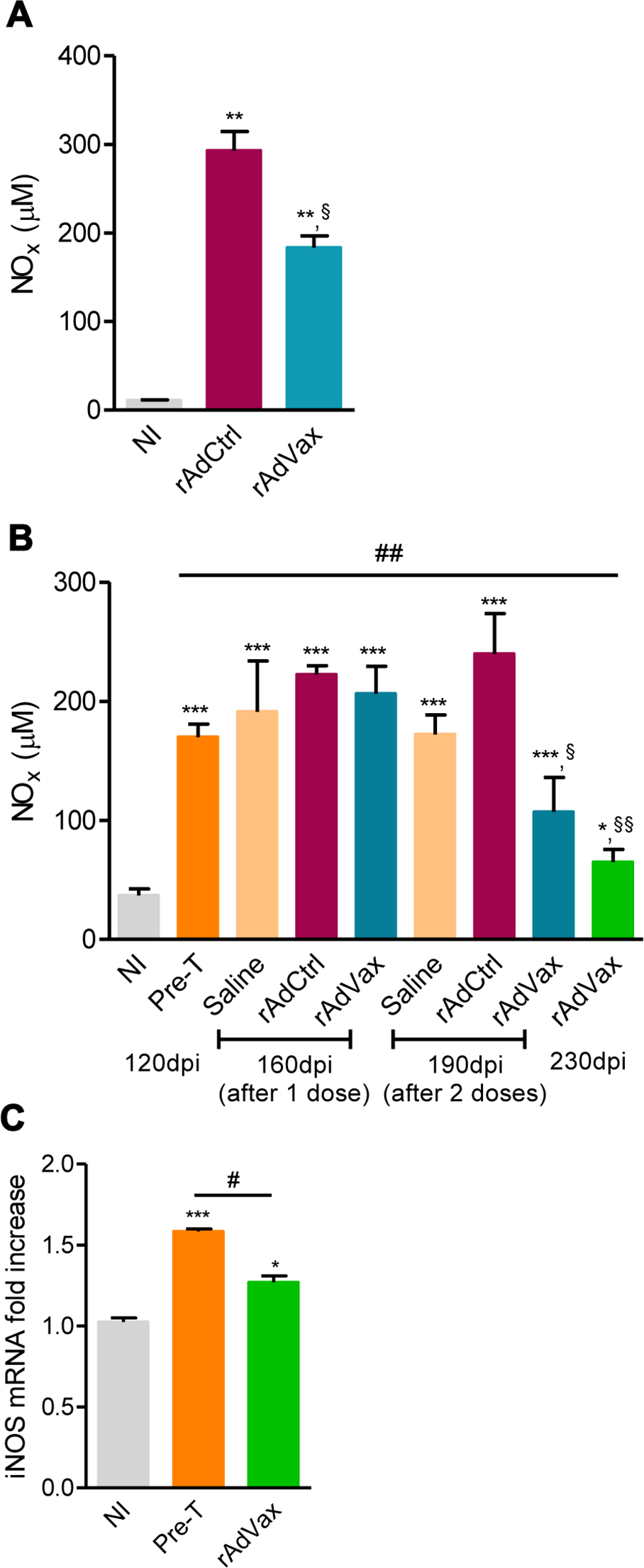 rAdVax immunotherapy modulated serum NOx levels and cardiac iNOS expression in chronically <i>T. cruzi</i>-infected mice.