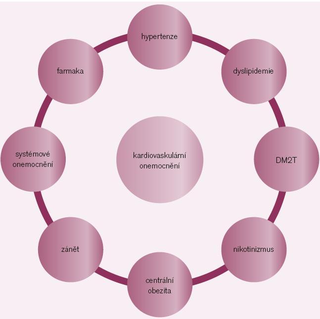 Mozaika vzniku kardiovaskulárních onemocnění (KVO).