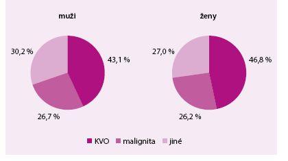 Standardizovaná úmrtnost podle příčin, Česká republika 2013