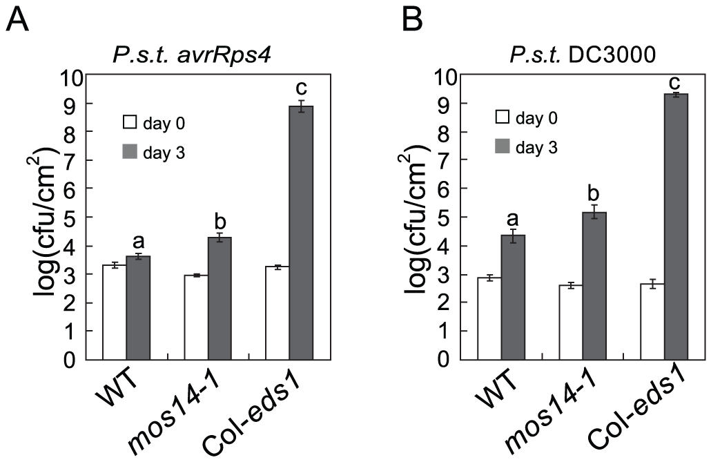 <i>mos14-1</i> compromises <i>RPS</i>4-mediated immunity and basal resistance.