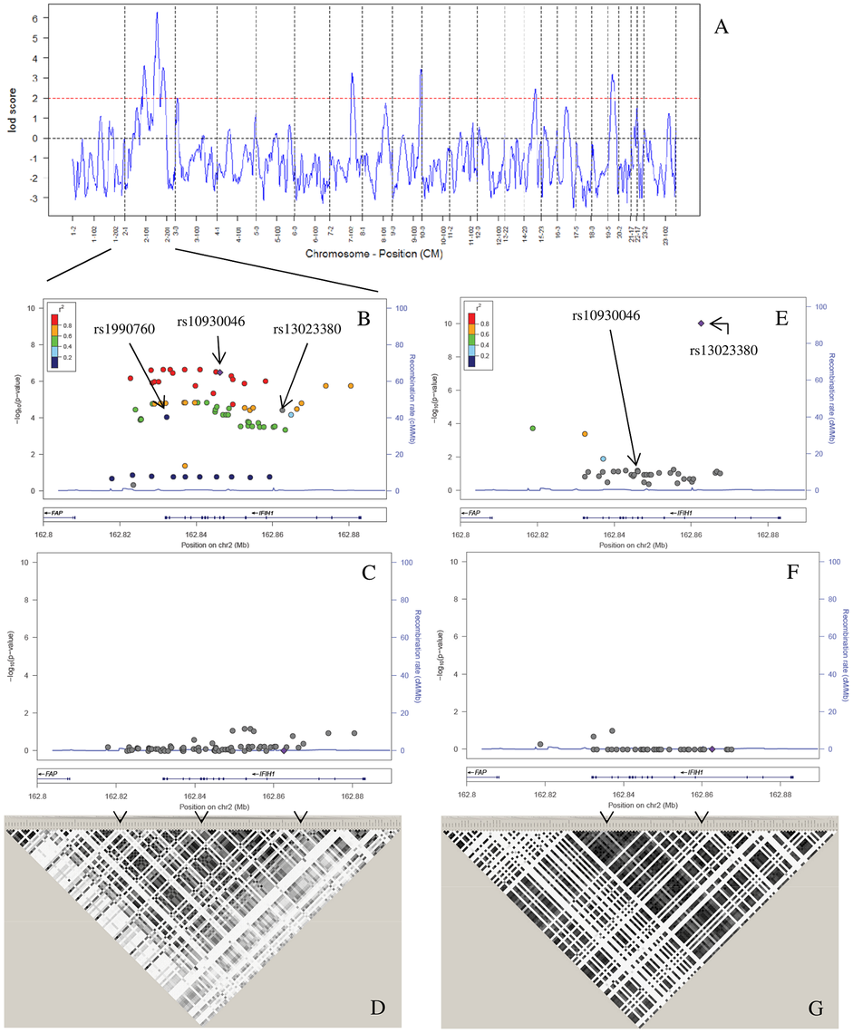 Admixture mapping and conditional analysis.
