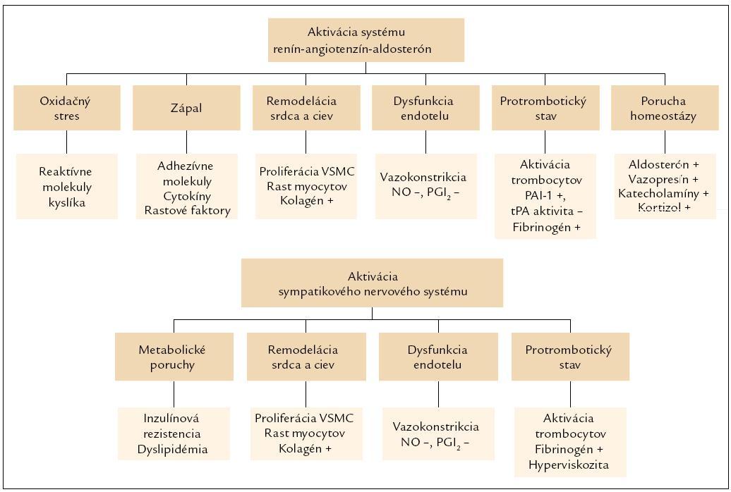 Obr. 1. Dlhodobé patofyziologické dôsledky aktivácie systému renín-angiotenzín-aldosterón a sympatikového nervového systému vedúce k aterogenéze a trombogenéze. VSMC – bunky hladkej svaloviny ciev (vascular smooth muscle cells), NO – oxid dusnatý, PGI2 – prostacyklín, PAI‑1 – inhibitor aktivátora plazminogénu typ 1, tPA – tkanivový typ aktivátora plazminogénu