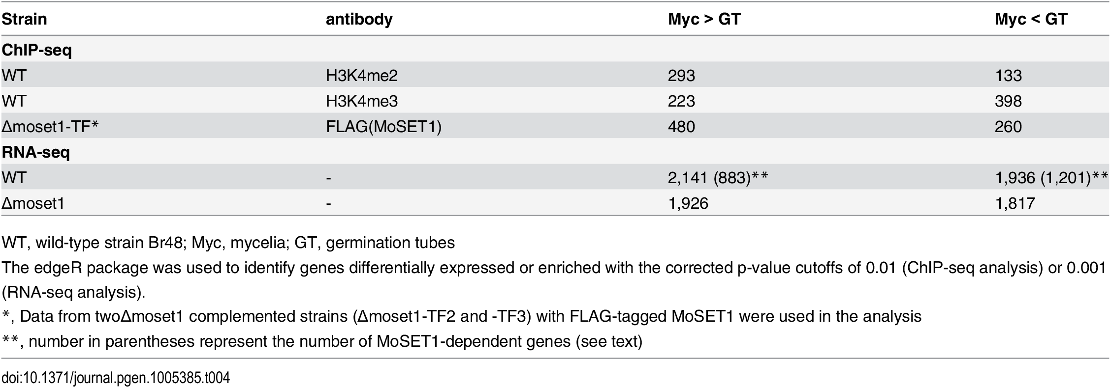 Number of genes differentially enriched for H3K4me2/H3K4me3 in ChIP-seq analysis and differentially expressed in RNA-seq analysis between mycelia and germination tubes.