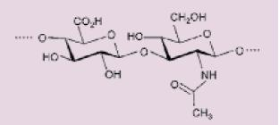 Chemická struktura HA.