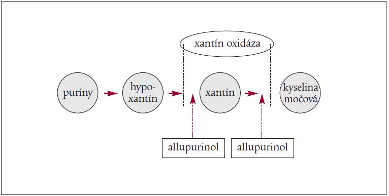 Mechanizmus pôsobenia allopurinolu.