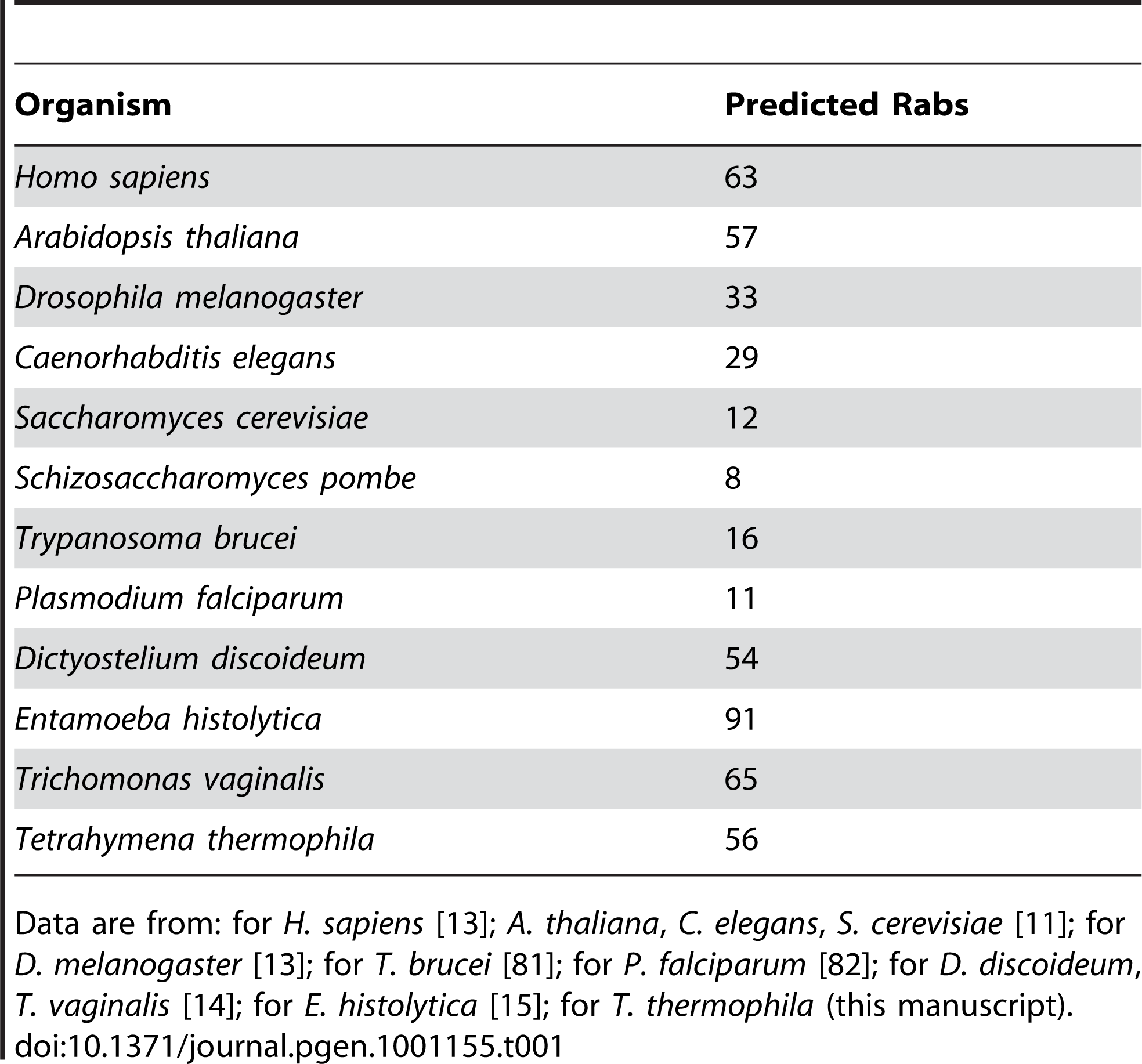 The genomes of some unicellular organisms encode large numbers of predicted Rabs, similar to or exceeding those of multicellular organisms.