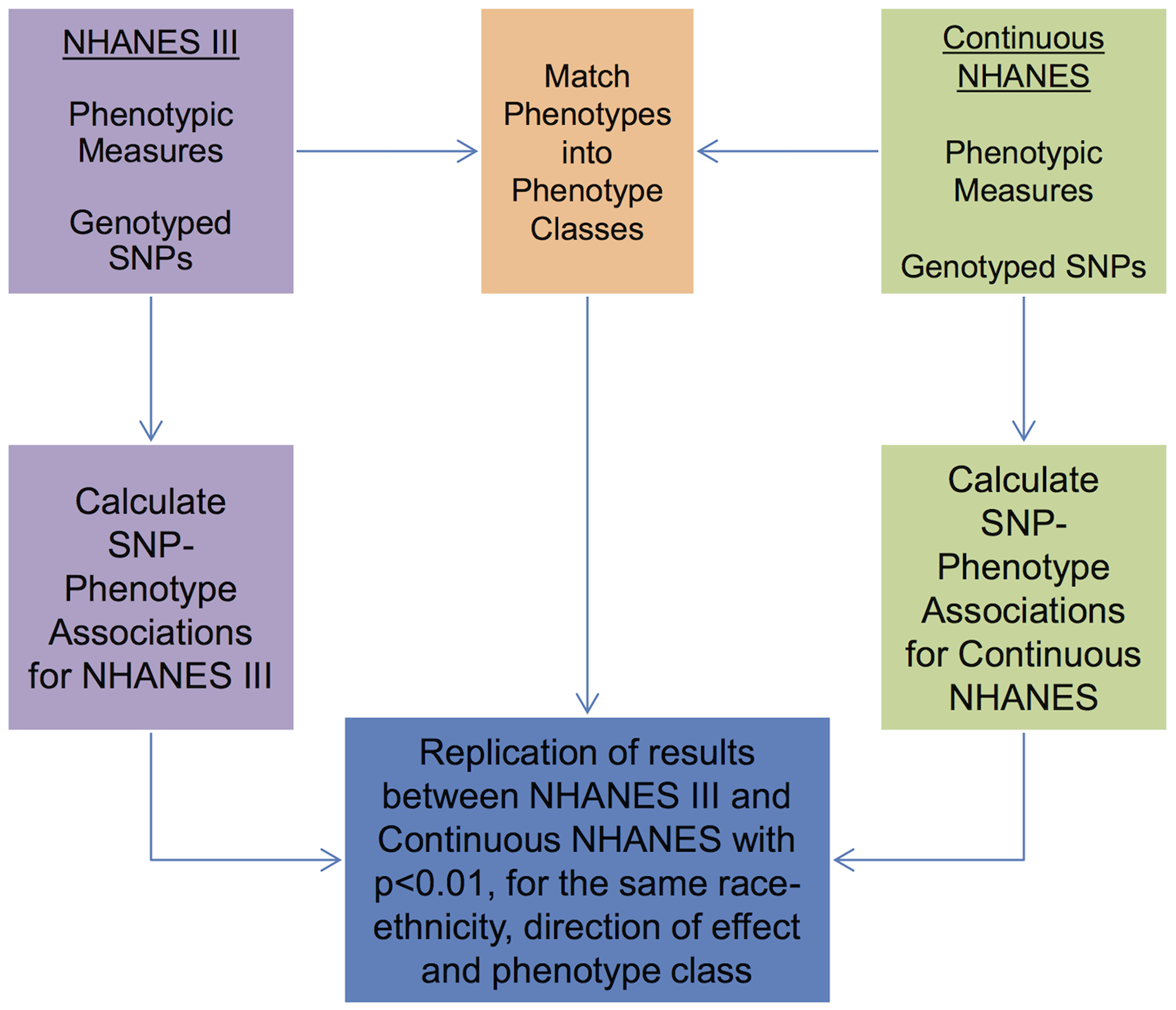 Overview of the approach for this study.