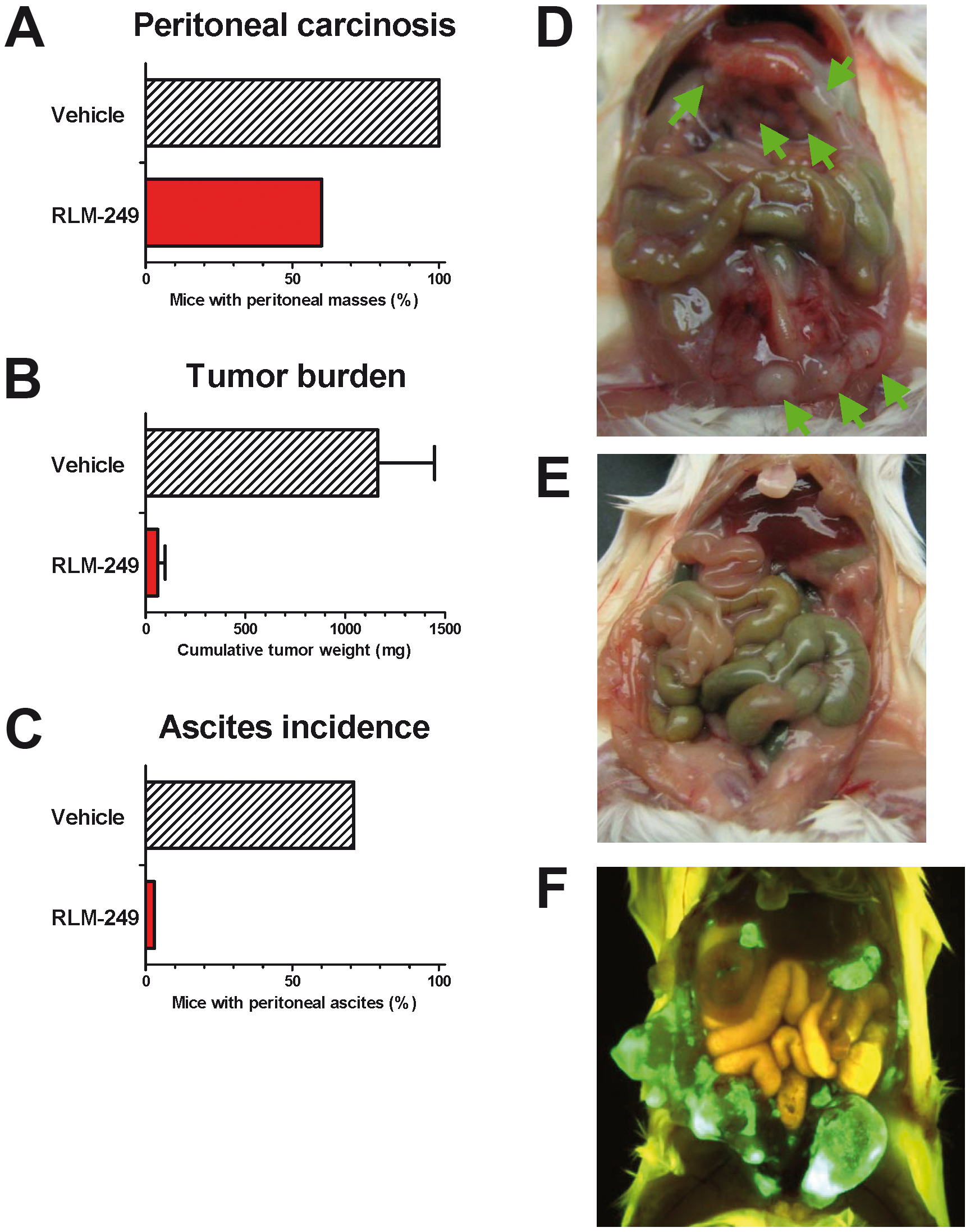 Therapy with R-LM249 of Rag2<sup>−/−</sup>;Il2rg<sup>−/−</sup> mice bearing i.p. human SK-OV-3 ovarian carcinoma.