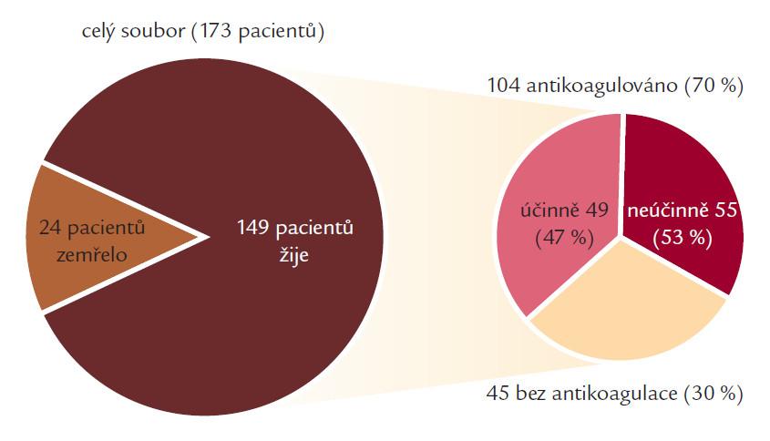 Podíl trvale antikoagulovaných pacientů ve sledovaném souboru.