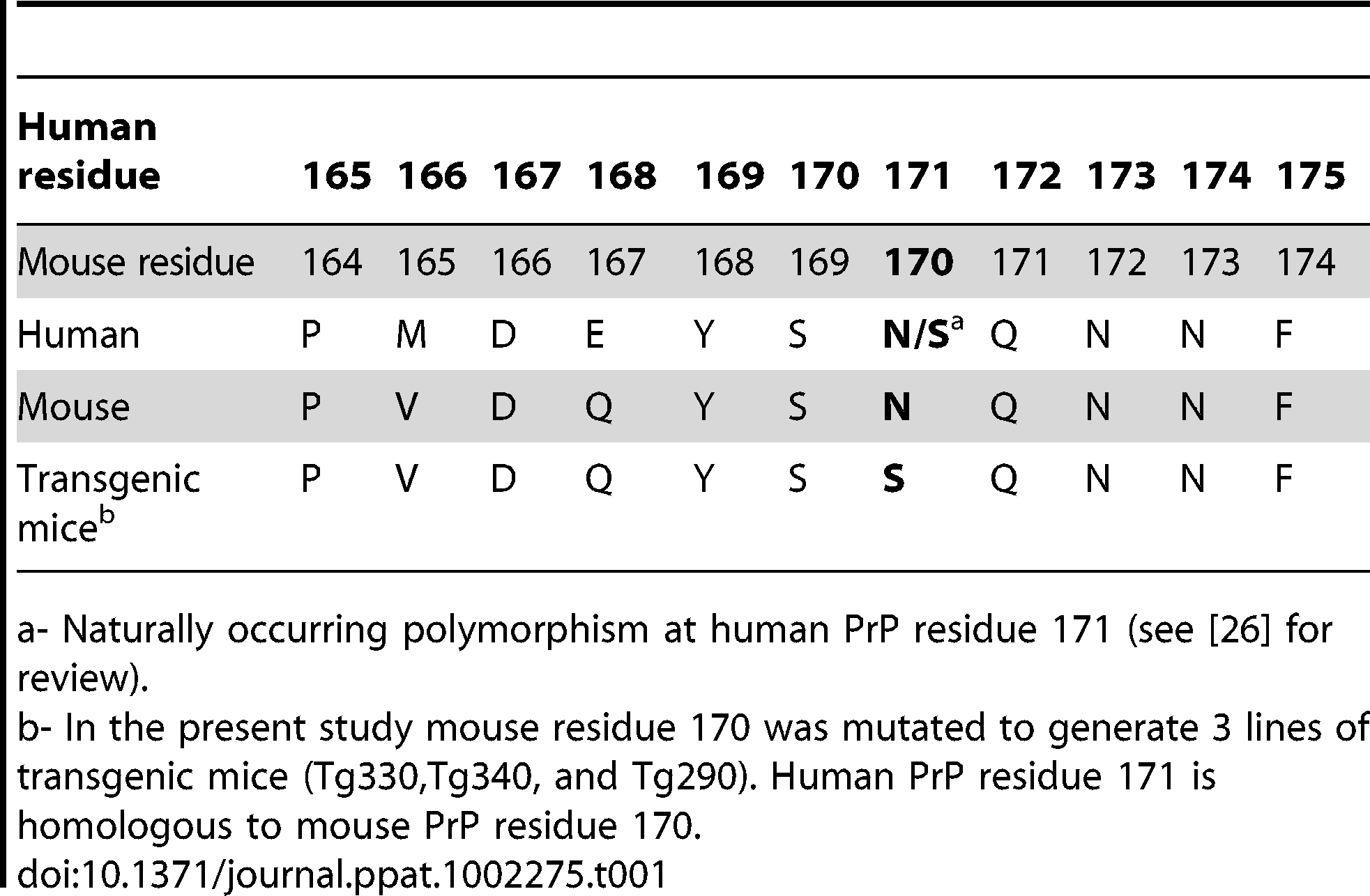 Comparison of PrP residues in humans, mice and transgenic mice generated in the present study.