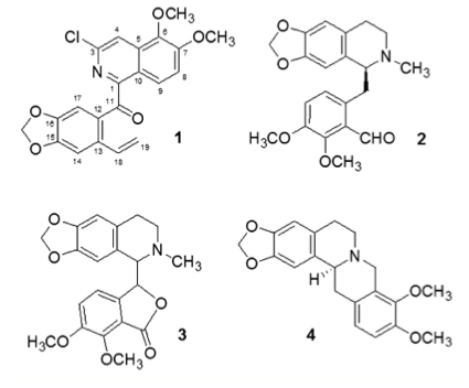 Fig. 1. Structures of alkaloids isolated from Hydrastis cana- densis extract