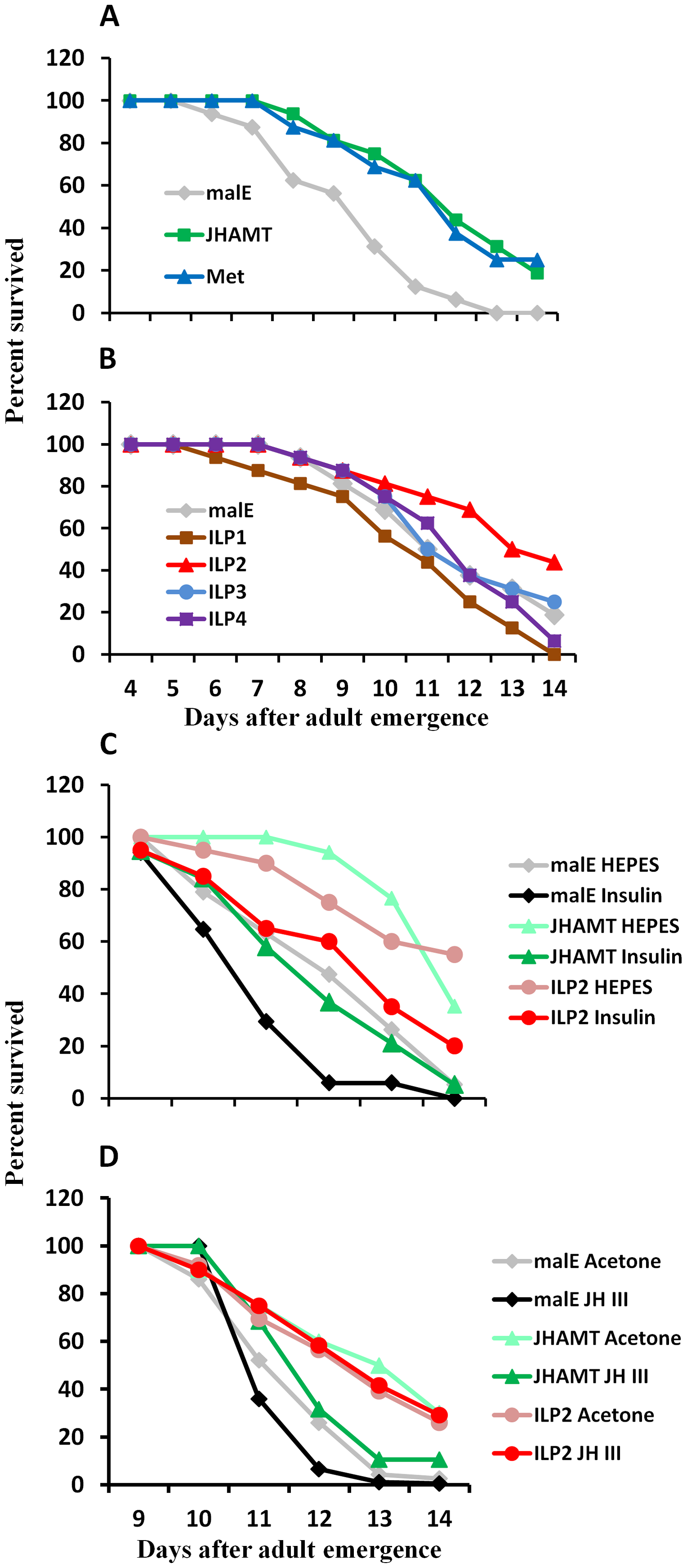 JH and insulin regulate starvation resistance.