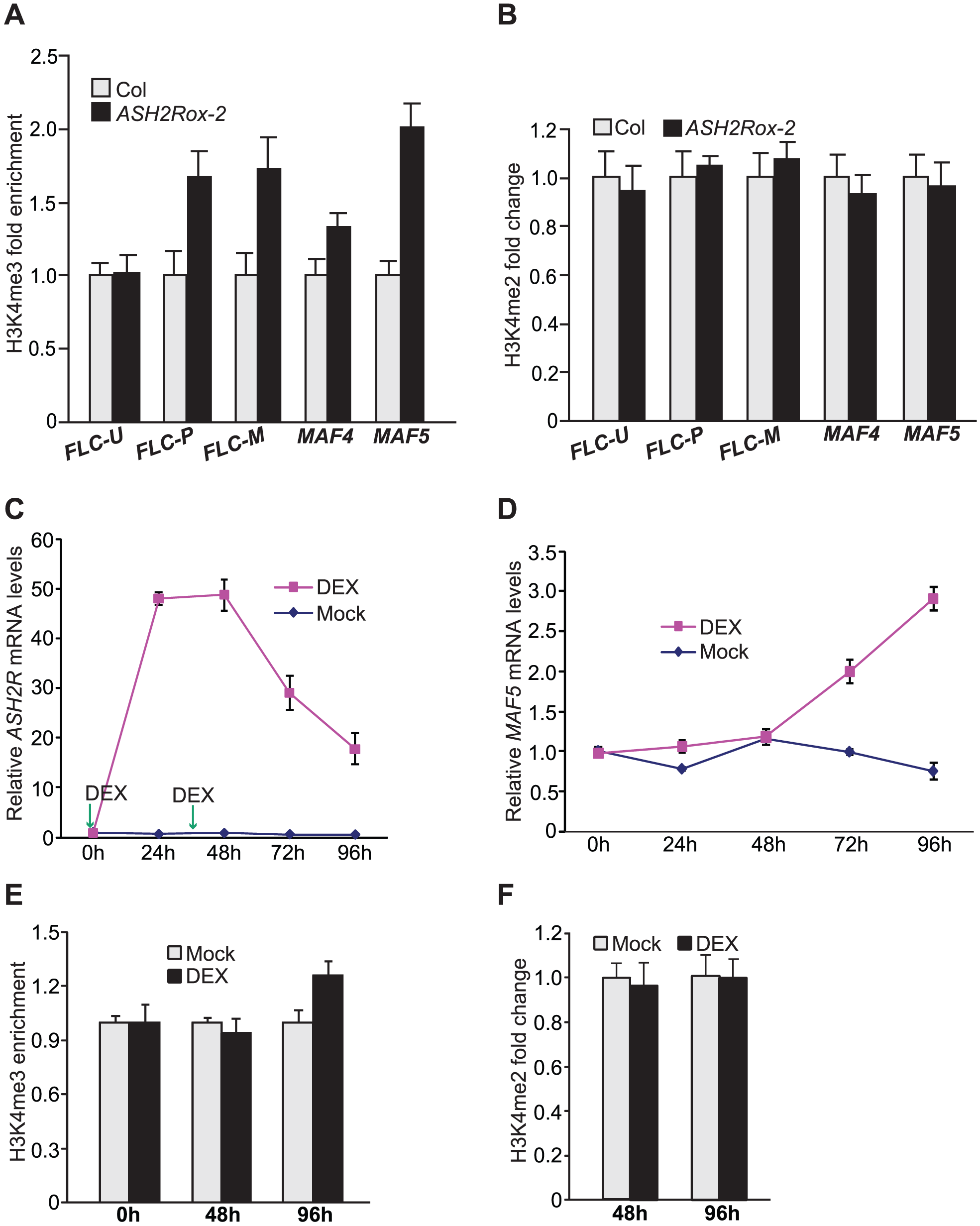Gain of <i>ASH2R</i> Function Leads to Increased H3K4 Trimethylation in Its Direct Target Genes.
