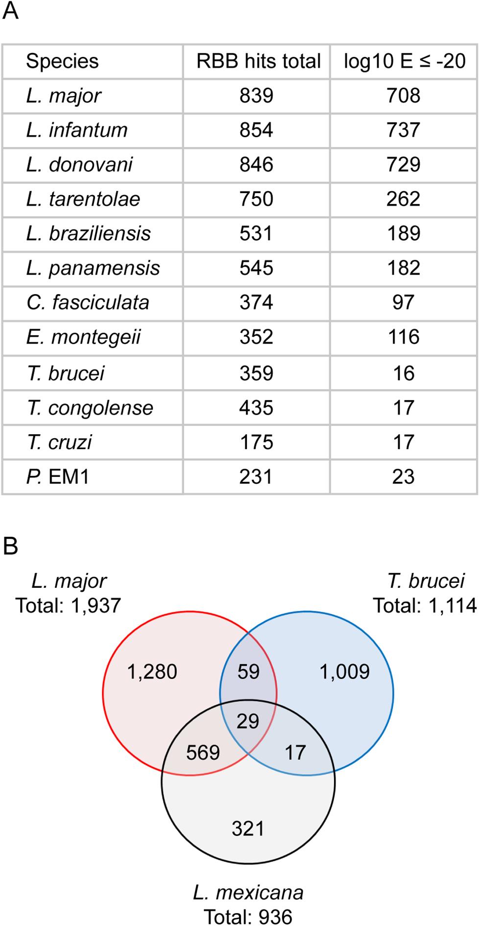 Conservation of novel transcript sequences.