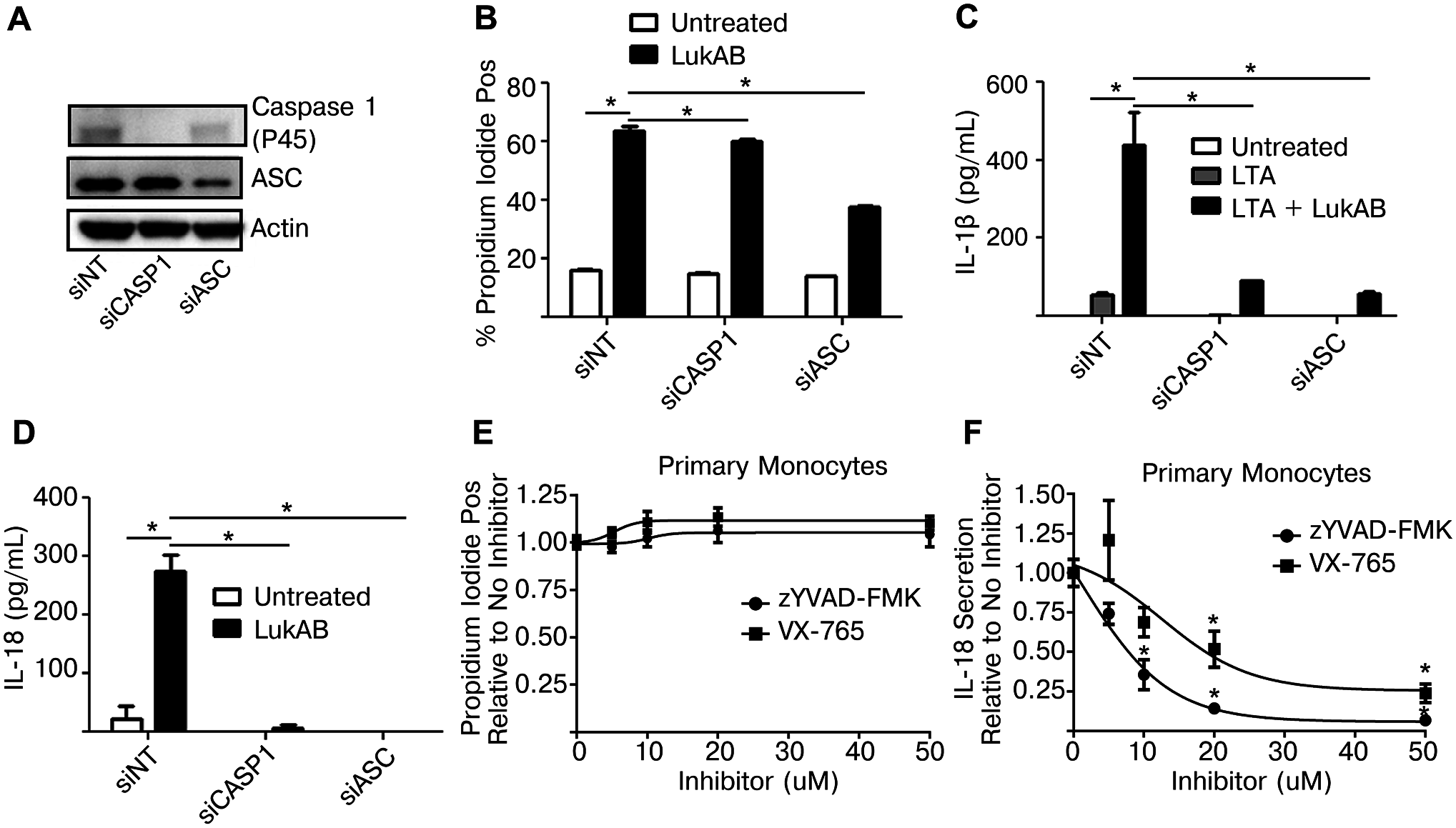 Genetic or pharmacologic disruption of Caspase 1 blocks LukAB-induced cytokine secretion but not cell death.