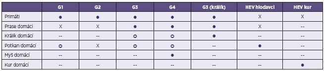 Experimentální mezidruhový přenos viru hepatitidy E (HEV) Table 3. Experimental interspecies transmission of hepatitis E virus (HEV)