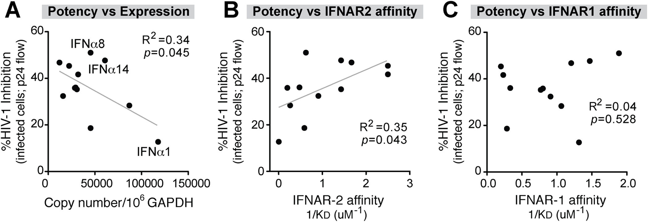 Correlation between IFNα antiviral potency and various parameters.