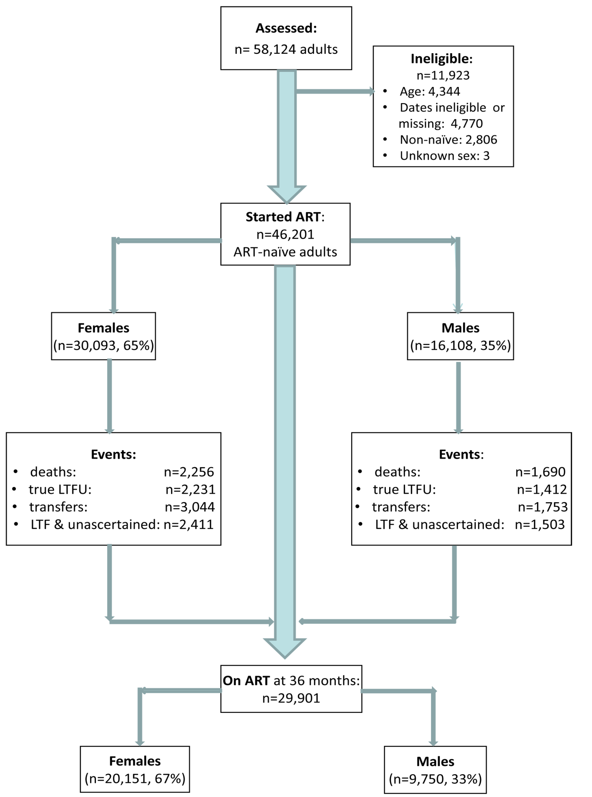 Patient flowchart. Description of a combined cohort of adult patients initiating public sector ART in South Africa, 2002–2009.