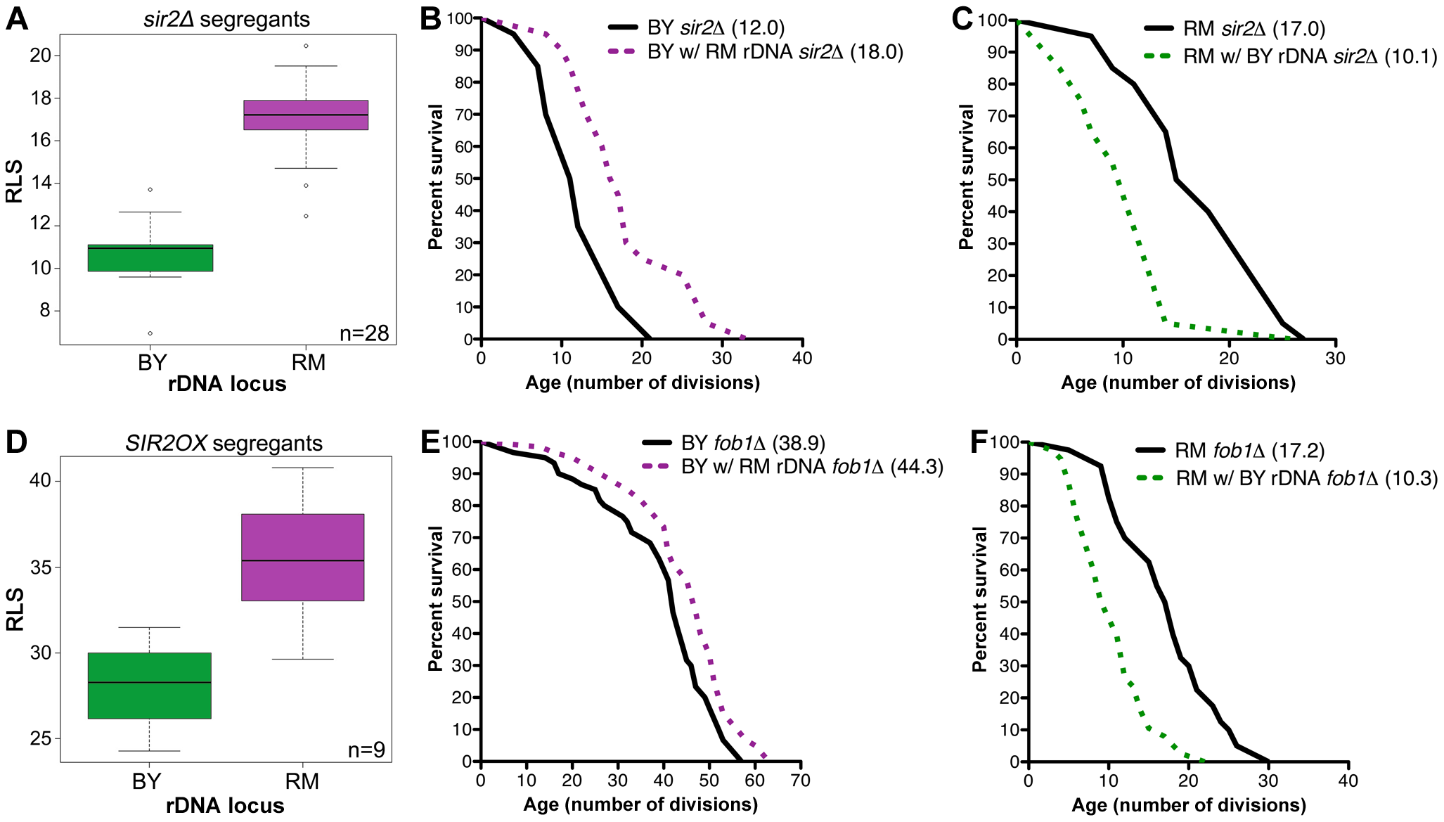 rDNA inheritance regulates lifespan independently of Sir2 and Fob1.