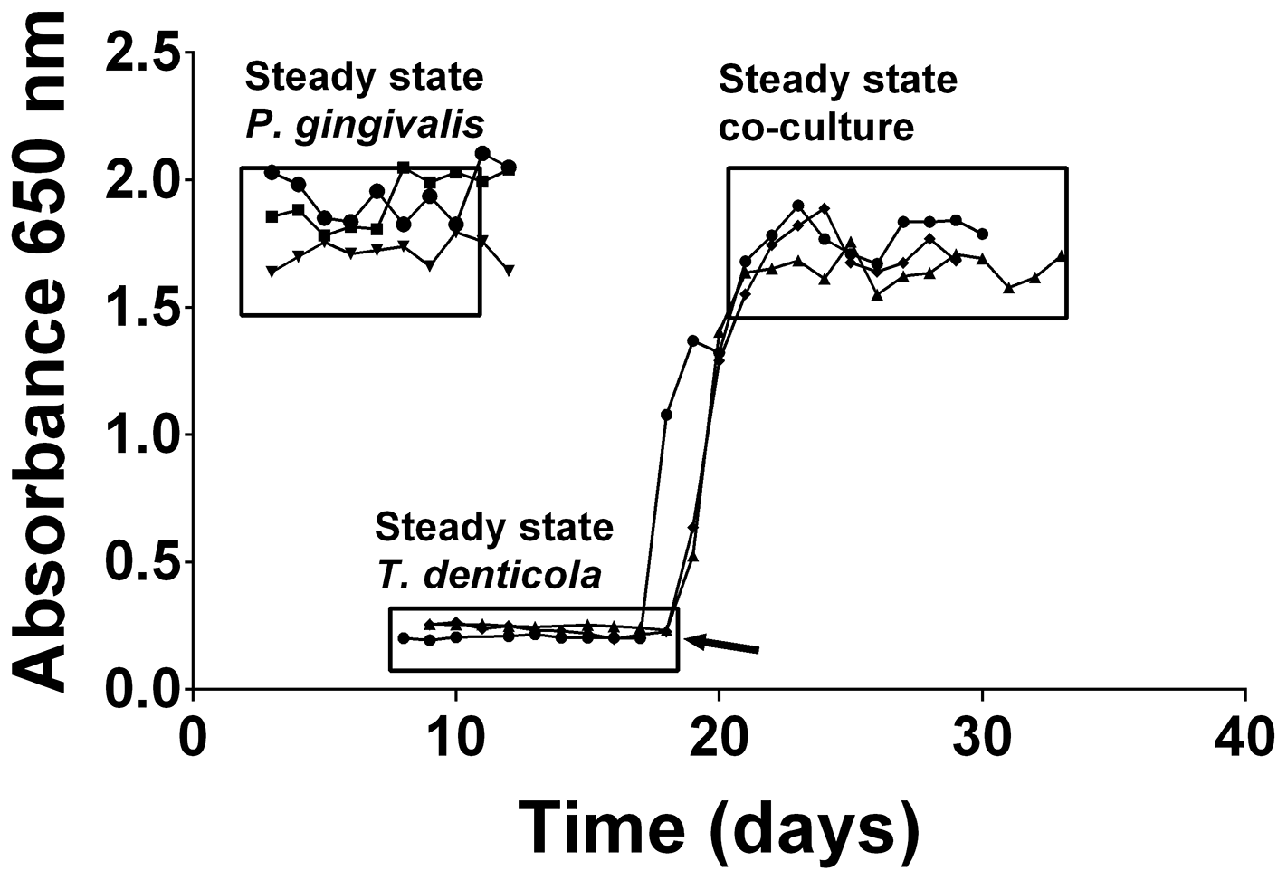 Continuous culture of <i>P. gingivalis</i> and <i>T. denticola</i> mono- and co-cultures.