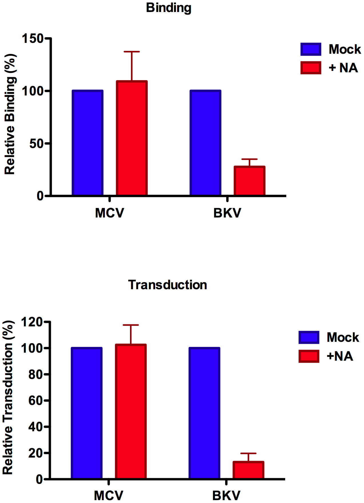 Neuraminidase treatment of A549 cells.