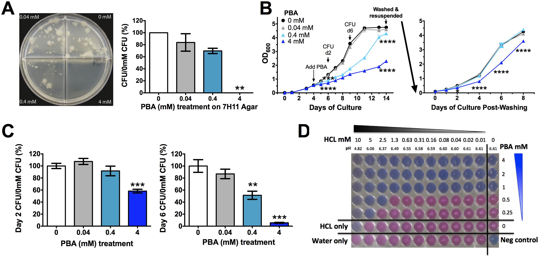 PBA inhihibts <i>Mtb</i> H37Rv growth on solid and in liquid medium.