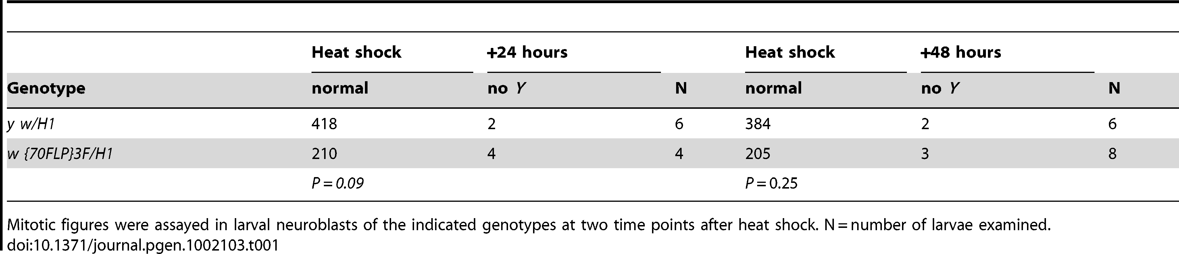 Assay for <i>Y</i> chromosome loss after dicentric induction.