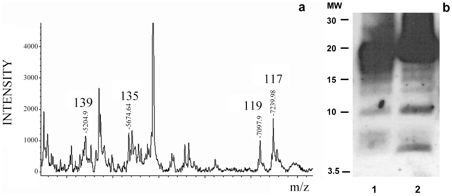 Limited proteolysis of sPrP<sup>Sc</sup>. a: MALDI-TOF spectrum of sPrP<sup>Sc</sup> treated with 1 µg/ml of PK.