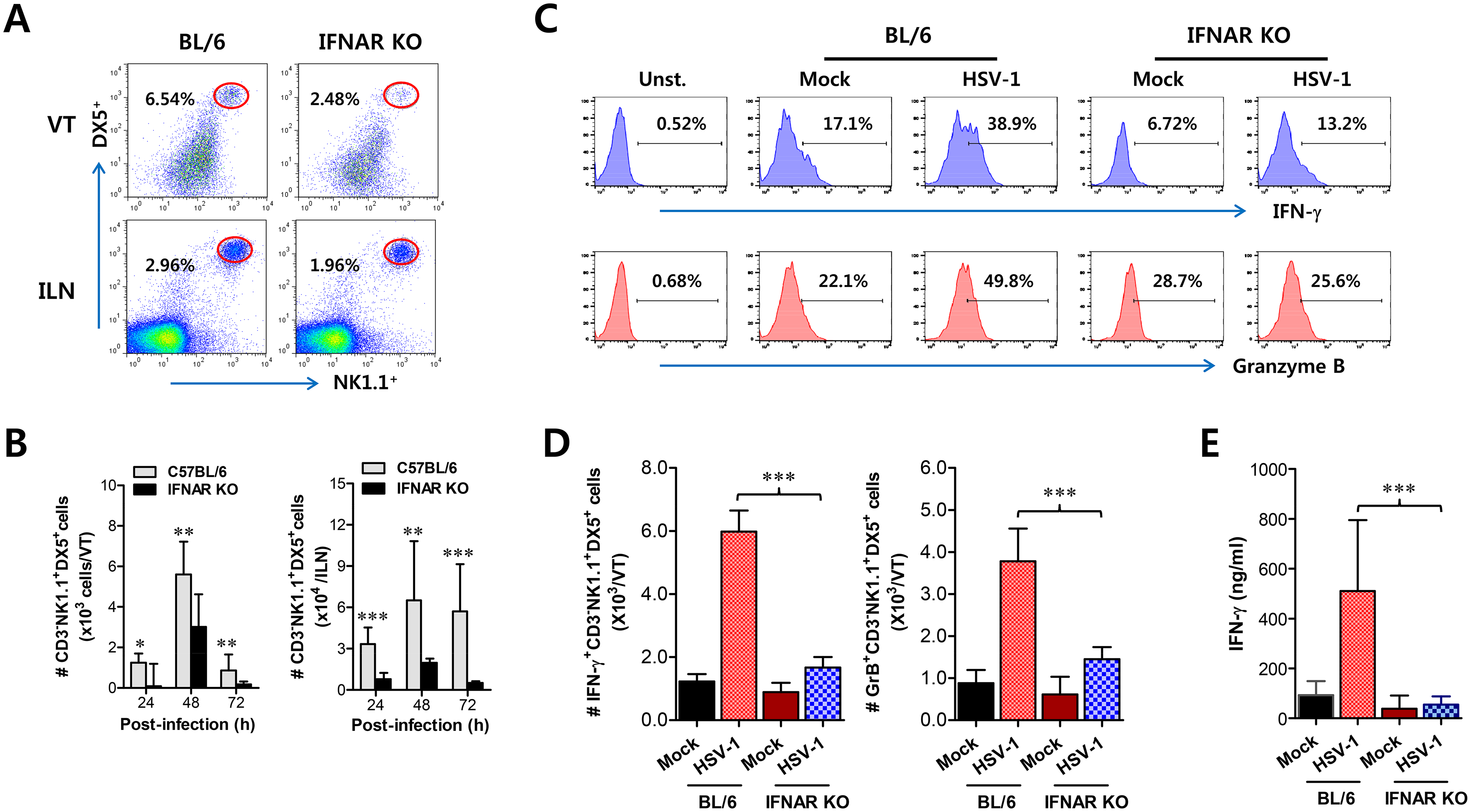 IFN-I signaling is involved in connected recruitment and activation of NK cells to CD11b<sup>+</sup>Ly-6C<sup>hi</sup> monocytes.