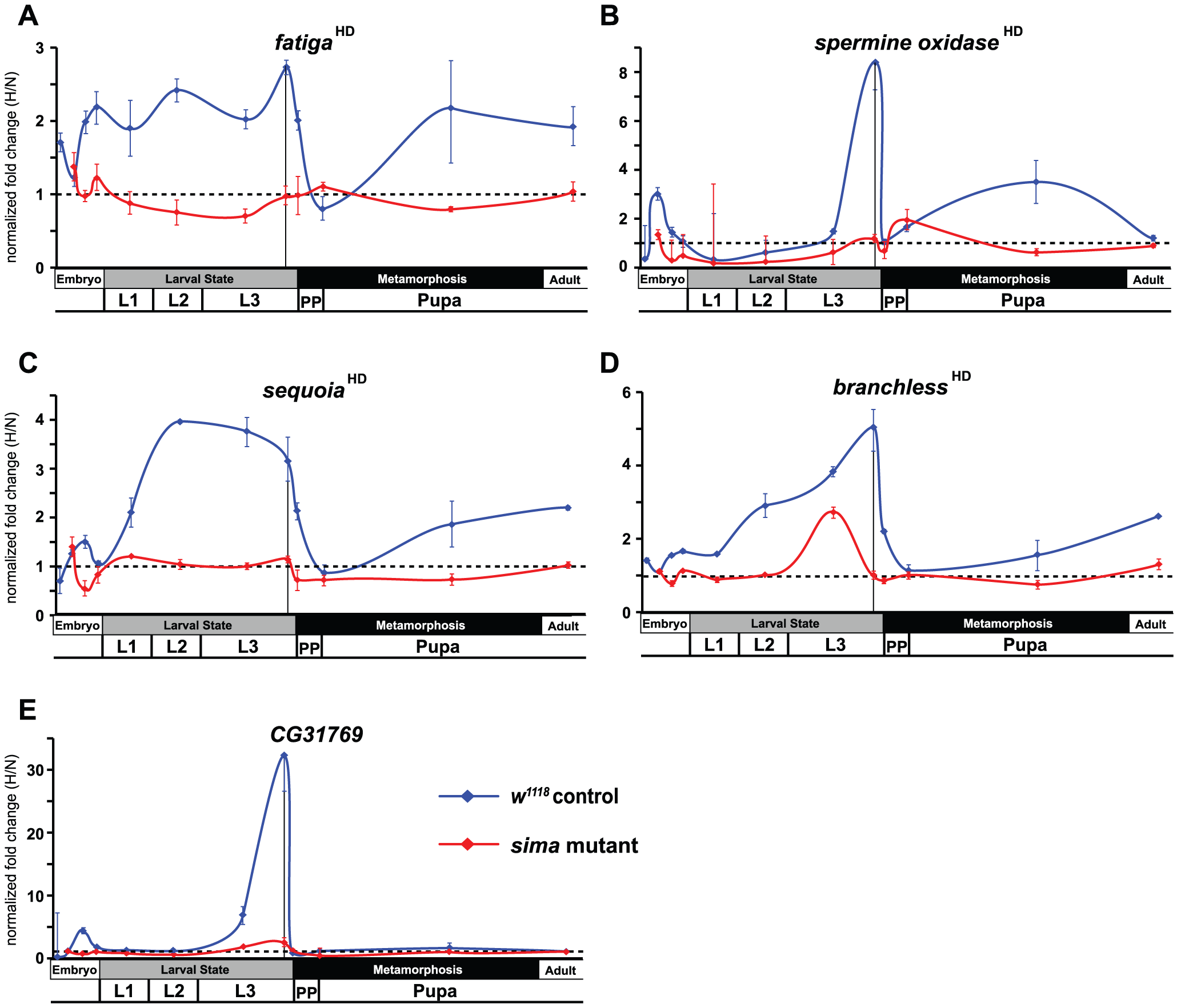 Temporal expression of HIF-dependent hypoxic response genes.