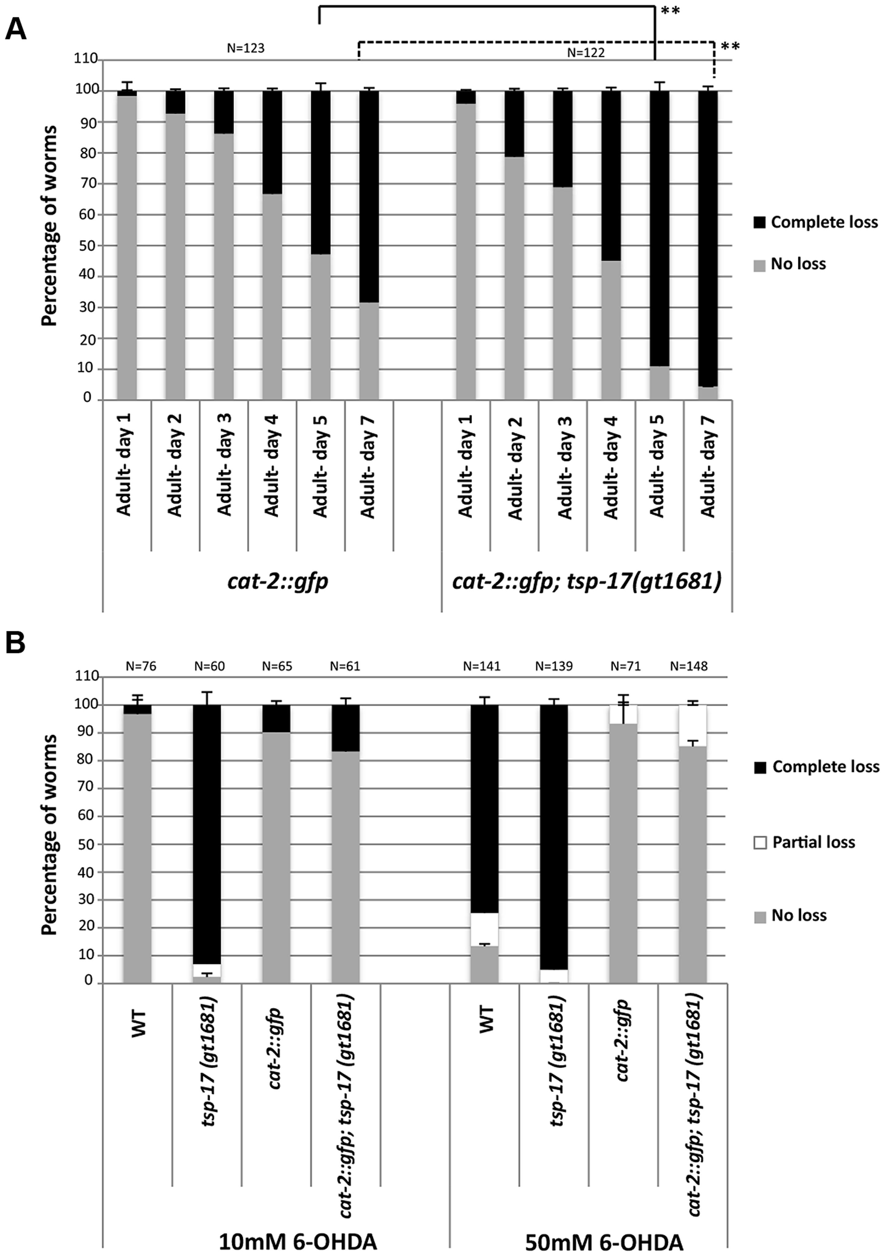 <i>tsp-17 (gt1681)</i> enhances the neurodegeneration phenotype of <i>cat-2</i>-overexpressing lines, and <i>cat-2</i> overexpression protects against 6-OHDA toxicity.