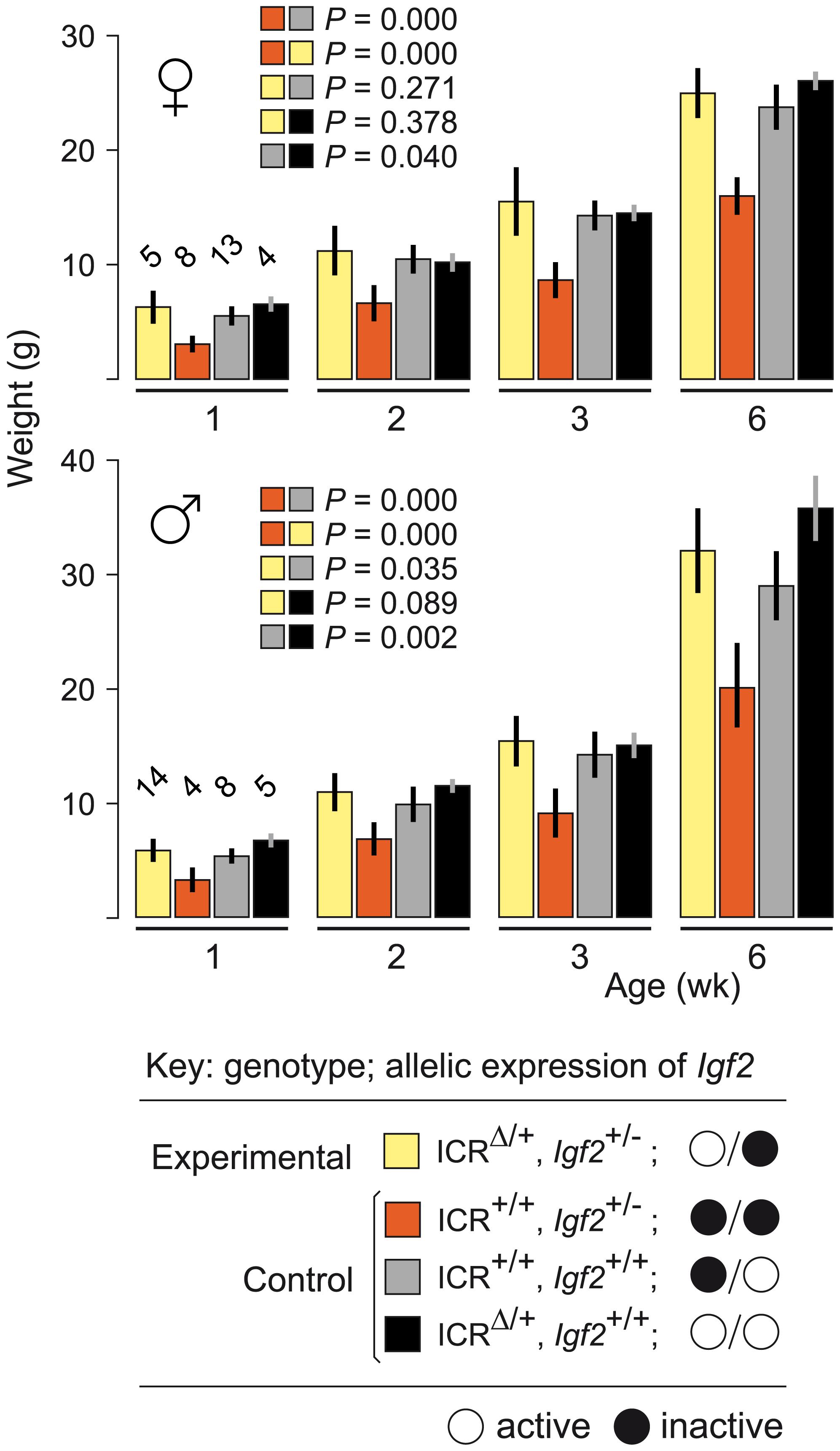 Weight gain in <i>Igf2</i> mutants carrying ICR<sup>Δ</sup>.