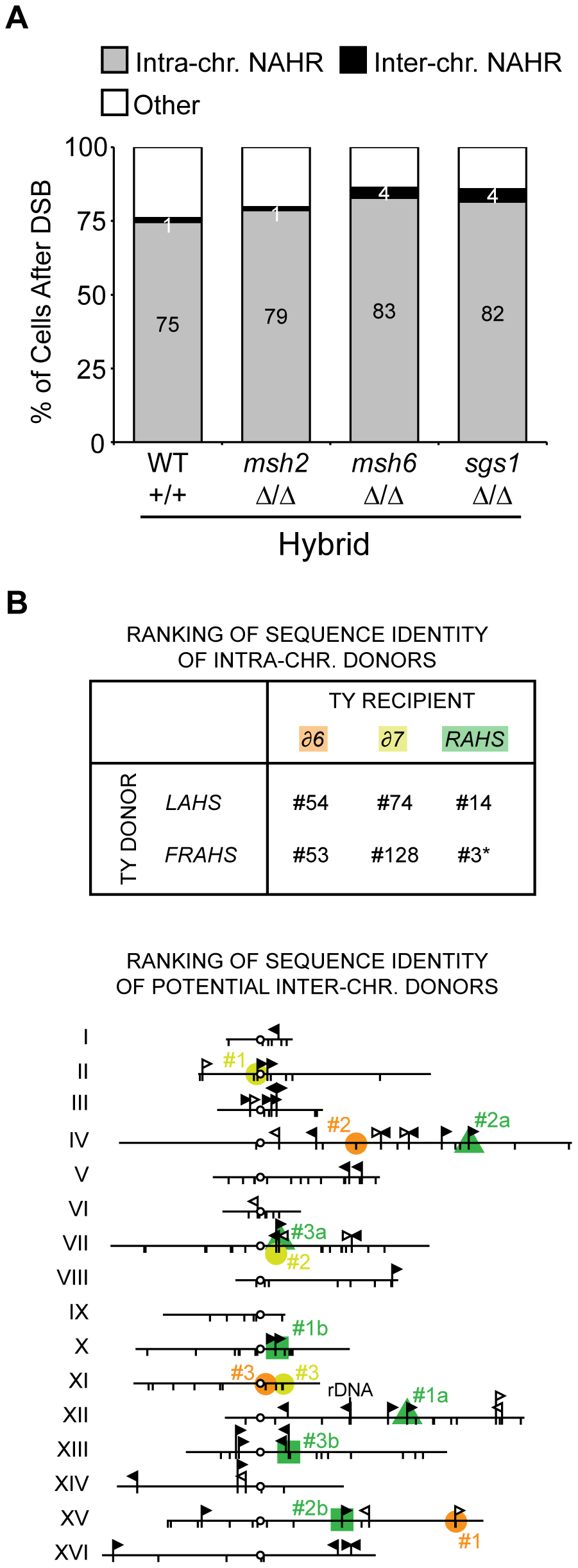 Donor competition: primary determinant is genomic position, not Ty sequence homology.