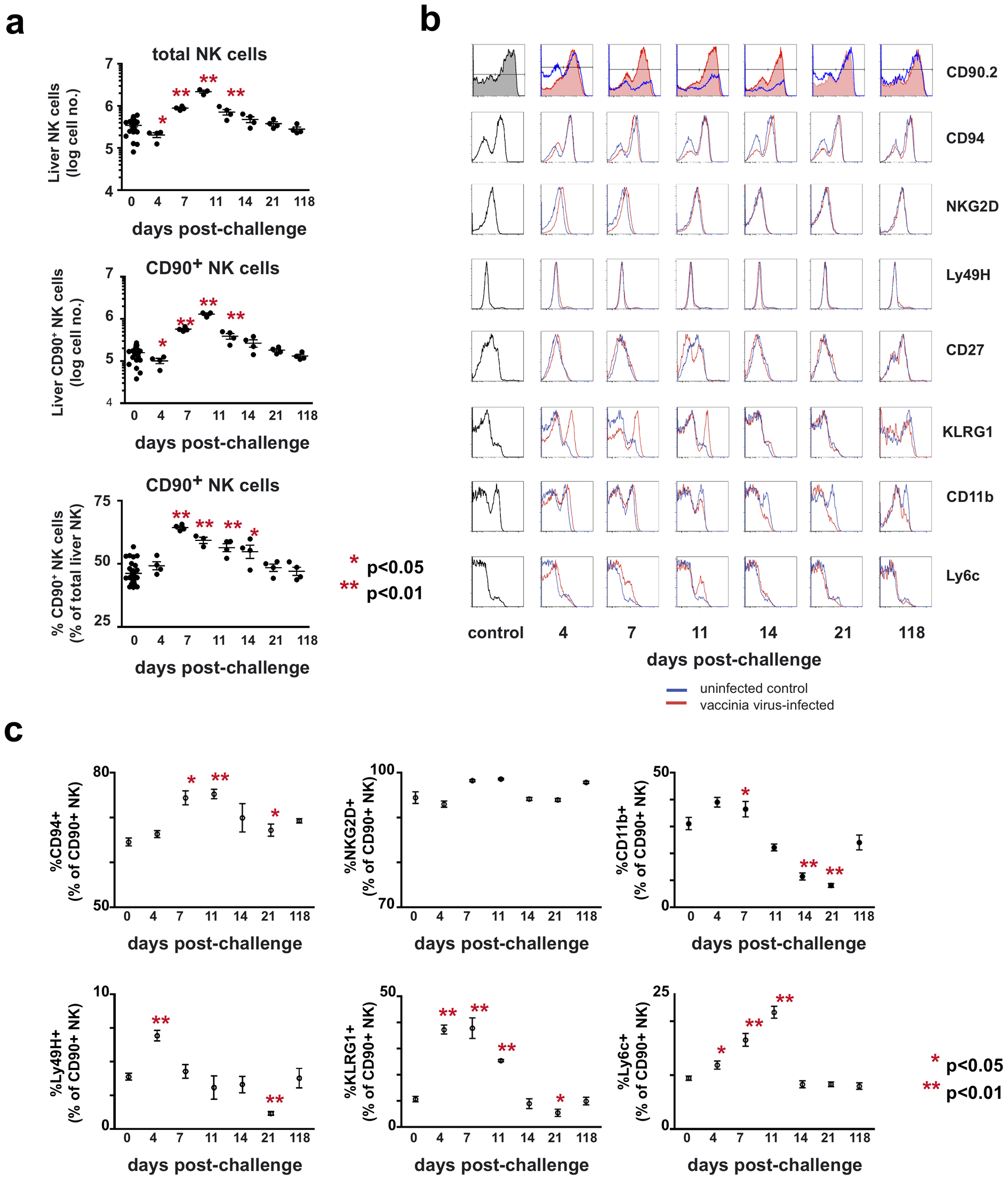 Kinetic and phenotypic analysis of liver NK cell responses following primary vaccinia virus infection reveals the preferential expansion of a Thy1<sup>+</sup> population.