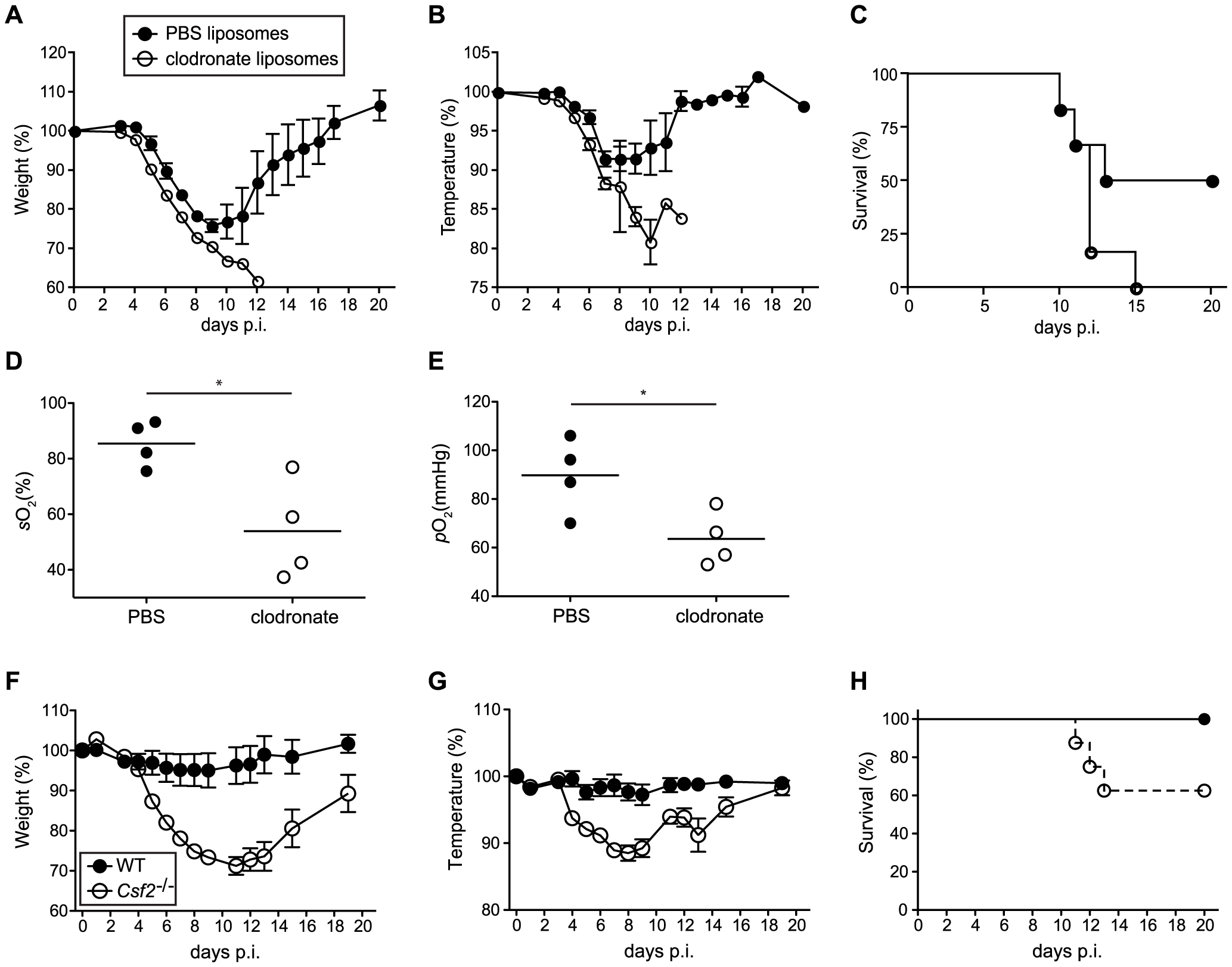 Increased morbidity and respiratory failure in mice upon selective depletion of alveolar macrophages prior to pulmonary virus infection.