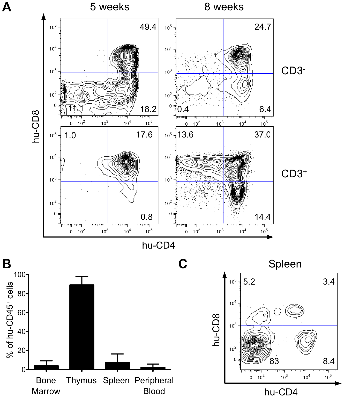 Human hematopoietic cell engraftment and T-cell development in HIS Rag2<sup>-/-</sup>γ<sub>c</sub><sup>-/-</sup> mice.
